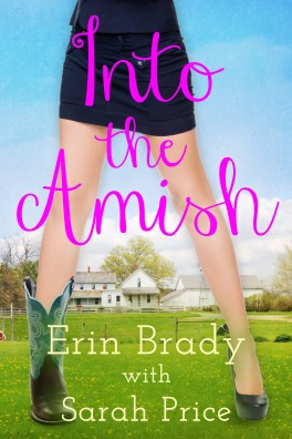 IntotheAmish_Ebook1 (1)